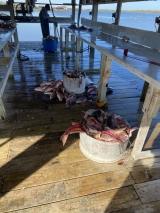 Hackberry-Fishing-11320-1