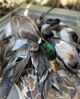 Hackberry-duck-hunting-113020-7