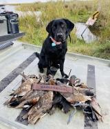 duck-hunting-hackberry-112720-14
